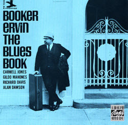 bluesbookcover